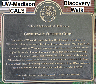 CALS Discovery Walk plaque