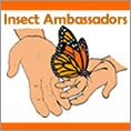 Insect Ambassadors
